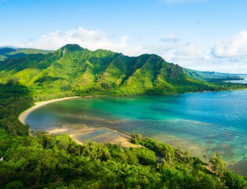 Imparare dalle Hawaii: Modernizzare il processo di selezione per attirare talenti ?